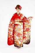 1747 赤系 白染め分け桜、菊、牡丹のし目柄 fs615 サムネイル