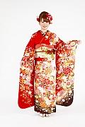 1769 赤系 白染め分け桜、菊、牡丹のし目柄 fs615 サムネイル