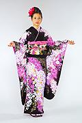 1450 茶系 こげ茶紫ぼかし桜柄 tt-b桂由美 サムネイル