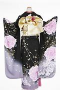 1794 黒系 ラメ入り紫の大きい薔薇柄 tt-b213 背面写真