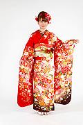 1748 赤系 白染め分け桜、菊、牡丹のし目柄 fs615 サムネイル