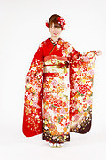 1812 赤系 白染め分け桜、菊、牡丹のし目柄 fs615 背面写真