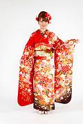 1859 赤系 白染め分け桜、菊、牡丹のし目柄 fs615 サムネイル
