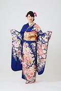 1877 紺系 まり、ぼたん桜菊古典柄 サムネイル