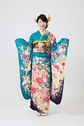 1880 緑系 ボタン菊桜・のし目柄 サムネイル
