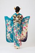 1880 緑系 ボタン菊桜・のし目柄背面写真