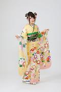 1898 黄系 ボタン菊・まり、古典柄前面写真