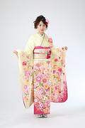 1911 クリーム系   桜 菊 牡丹古典柄 サムネイル