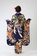 1972 紺系 熨斗目に菊の花 古典柄背面写真