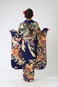1983 紺系 熨斗目に菊と牡丹 古典柄背面写真