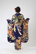 1996 紺系 熨斗目に菊重ね 古典柄背面写真