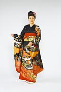 364 黒系 金彩、雲と鶴と花の饗宴古典柄 サムネイル