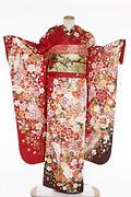 1812 赤系 白染め分け桜、菊、牡丹のし目柄 fs615  サムネイル